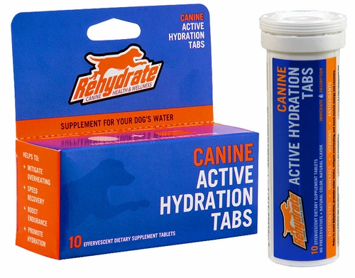 Rehydrate Sports Drink for Dogs