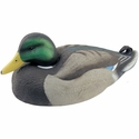 buy discount  Rester Drake Decoy