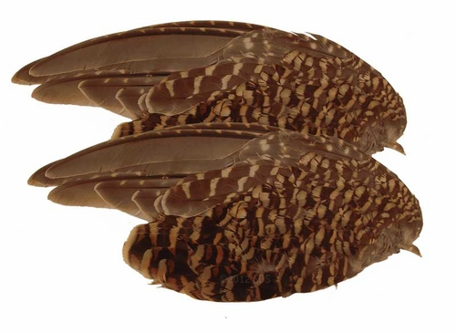 Sharptail Grouse Wings -- 2 Pack