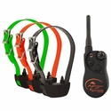 buy discount  SportDOG Sport Hunter SD-1325 3-Dog Combo