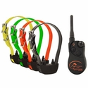 buy discount  SportDOG Sport Hunter SD-1325 4-Dog Combo