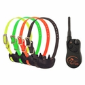 buy discount  SportDOG SportHunter SD-1825 4-dog