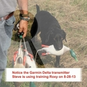 buy discount  Steve training ROXY with the Garmin Delta