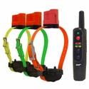 buy Tri-Tronics Upland G3 EXP COMPLETE 3-dog + FREE HOLSTER shock collars