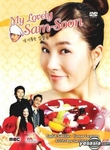 My Lovely Sam-Soon: MBC TV Drama (Region-1 / 6 DVD Set)
