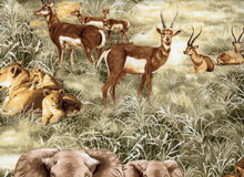 African Plains Wildlife Cotton