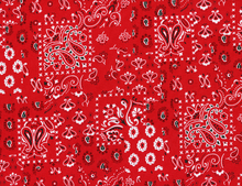 Alexander Henry Arroyo Bandana Cotton Red
