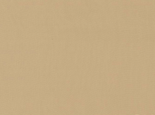 Ambiance Rayon Lining Beige