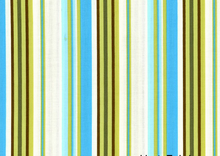 Amy Butler Happy Stripe River