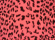 Animal Print Leopard Swimwear Neon