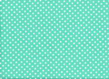 Aunt Grace Dots Cotton Mint