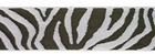 Brown and Silver Zebra Ribbon 1.5""