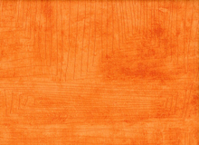 Carrie Bloomston Story Scratch Cotton Melon