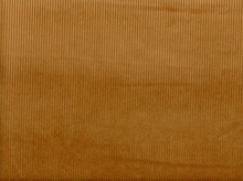 Cotton Corduroy Beige