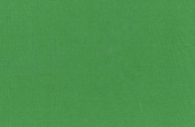 Cotton Poly Knit Ribbing Fabric Green