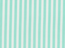 Dear Stella Caf� Stripe Cotton Mint