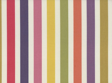 Dear Stella Piper Stripe Cotton Multi
