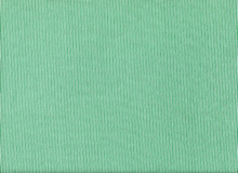 Dear Stella Sunburst Stripe Cotton Green