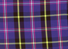 Ella Moss Rayon Plaid Purple
