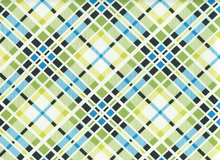 Denyse Schmidt Florence Multi Plaid Cotton Malachite