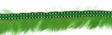 Fur Trim With Stitching Green