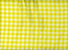 Gingham Rayon Challis Yellow