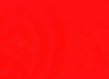 Gore-Tex Water Resistant Fabric Red