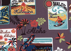 Hawaii Stickers Cotton Grey