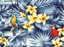 Hawaiian Fabric