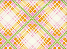 Heather Bailey Summer Plaid Tangerine