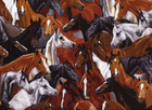 Horse Collage Cotton