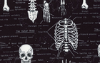 Human Body Skeleton Cotton Fabric Black