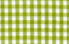 Imported Check Fabric Lime