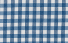 Imported Check Fabric Teal