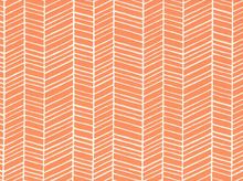 Joel Dewberry Herringbone Cotton Carrot