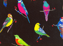 Laminated Cotton Echino Birds Black