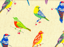 Laminated Cotton Echino Birds Natural