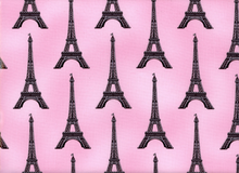 Laminated Cotton Paris Panache Blanche