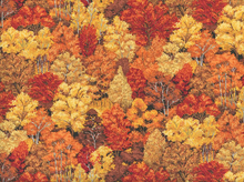Landscape Fall Forest Cotton Orange