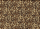 Leopard Stretch Charmeuse