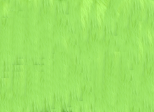 Luxury Shag Faux Fur Neon Green
