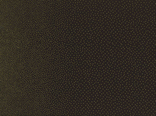 Metallic Dot Double Border Print Cotton Black