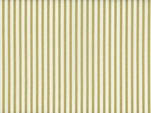 Metallic Stripe Cotton Cream and Gold
