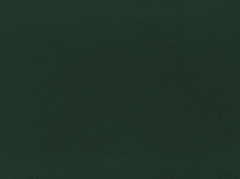 No Pill Fleece Fabric Forest Green