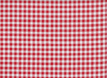 Oilcloth Fabric Gingham Red