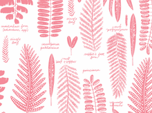 Cloud 9 Biology Fronds Organic Cotton Pink