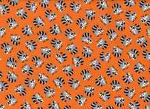 Raccoon Flannel Orange
