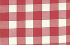 Red Checkered Moda Toweling Fabric