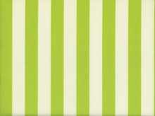 Riley Blake Le Creme Stripe Cotton Lime