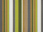 Sunbrella Carousel Limelight Stripe Canvas